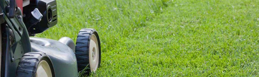 muru niitmine